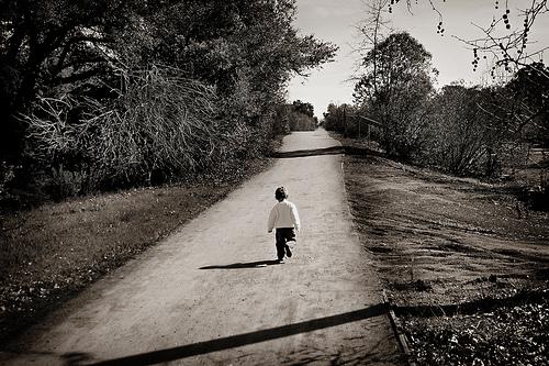 A longa estrada